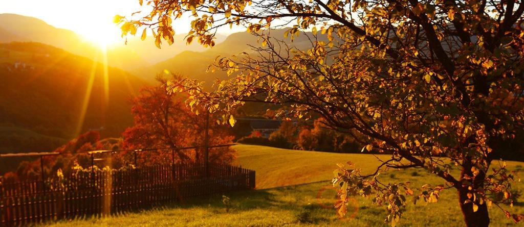 Goldener Oktober in Südtirol (Foto-Slideshow)