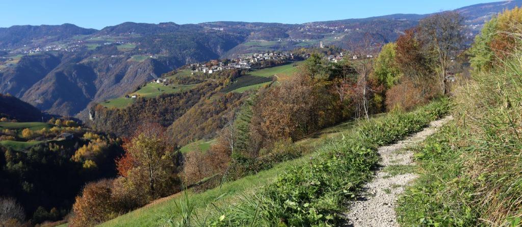 Spaziergang durch Südtirols Wiesen (Foto-Slideshow)